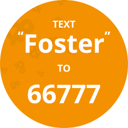 Text foster to 66777